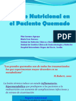 Nutricionartificialenelquemadop Serrano 100630134011 Phpapp01