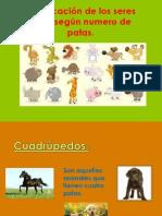 los animales 2° básico 2013