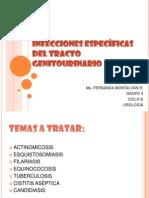 INFECCIONES ESPECÍFICAS  DEL TRACTO GENITOURINARIO