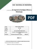 Informe 10 Mineria y Medio Ambiente