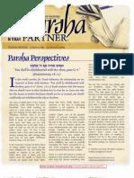 Parsha Patners Shoftim 2009