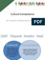 hsc 300 - - cultural competence presentation