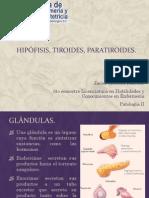 hipfisistiroidesparatiroides-110309002844-phpapp01.pptx