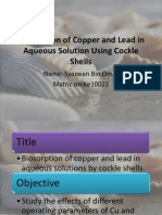 Biosorption of Copper and Lead in Aqueous Solution Reviewed