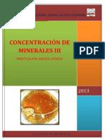 CONCENTRACIÓN DE MINERALES III medios densos