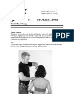 MMT Volume 1 Upper Extremities Sample