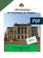 Perfil do Município de Maputo, 2010