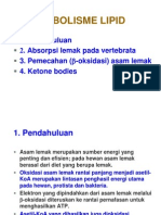 <!doctype html>