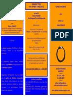 Brochure PleineConscience 2010-09