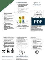 Triptico de Estilos de Aprendizaje Docx