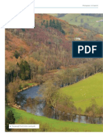 Councils seek greener pastures