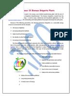 Importance Of Biomass Briquette Plant