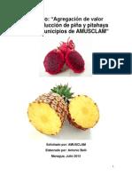 Valor agregado Pitahaya y Piña AB2