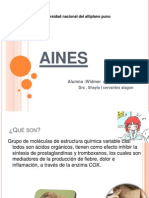 aines-120828000538-phpapp02