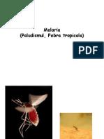 22. Malaria