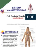 Apres Sistema Cardiovascular Bioloja v2