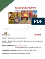 Perspectivas de La Quinua