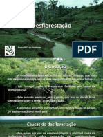 desflorestao-catarinaqueirsn15c-130416090949-phpapp02