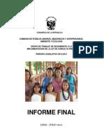 Informe Final - 2013 - Grupo de Trabajo Consulta Previa