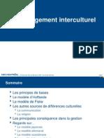 Mgt interculturel