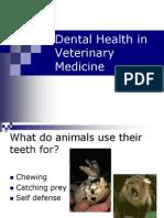 DH - Dental Health