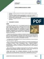 106666292 Informe de Lixiviacion y Cementacion de Cobre 2012 a Copia