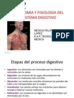 Digestivo Dr Felipe