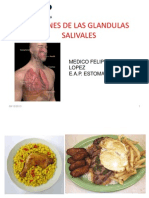 Lesiones Glandulas Salivales Dr Felipe