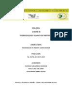 RESUMEN UNIDAD_3 RMI.docx
