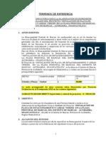 TDR pavimento.doc