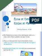 MM-Fluxo_de_energia_e_ciclos_de_materia.pdf