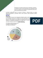 Informe de Laboratorio Biologia mitosis y meiosis