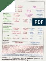Condiciones de Potencial Salino -Sodico