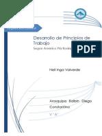 Principios Plá.docx