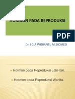 Hormon Pada Reproduksi Laki-laki & Wanita