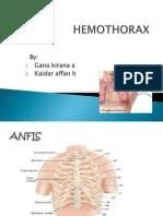 Pp Hemothorax