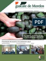 Gaceta de La Industria Aguacatera Del Estado de Morelos-Mayo 2012