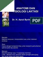 Anatomi Dan Fisiologi Laktasi
