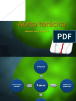 Aorta torácica