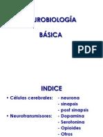 Neurobiolog a Drogas