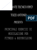Principali Esercizi Di Muscolazione Per Fitness e Bodybuilding