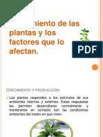 crecimiento y factores de desarollo Grupo 4.pptx