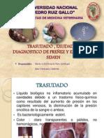 Exudado trasudado, dx de preñez y analisis de orina