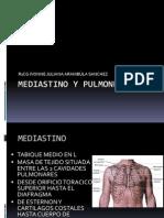 Mediastino y Pulmones