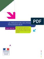 Prevention Risques Psychosociaux a Destination Des Inspecteurs Du Travail
