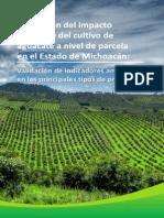 Evaluación del impacto ecológico del cultivo de aguacate a nivel de parcela en el Estado de Michoacán