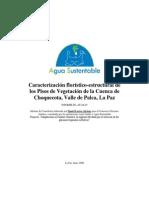 Caracterizacion Florstico-estructural de los pisos de vegetacion de la cuenca Choquecota.pdf