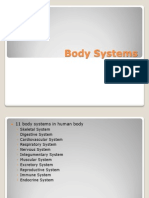 body systems 2