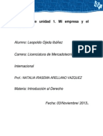 IDE_U1_EU_LEOI