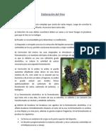 Elaboración del Vino lab de introooookimy